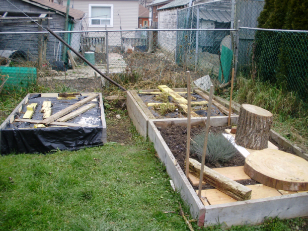 The raised beds, put to sleep.